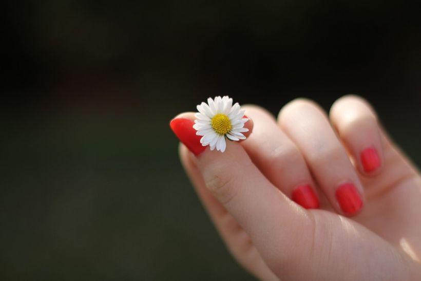 Arte floral: descubre la última tendencia en manicure